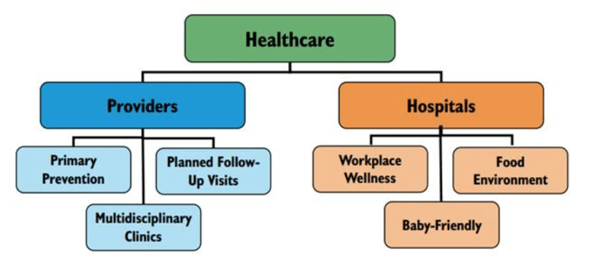 Health Care Flow Chart