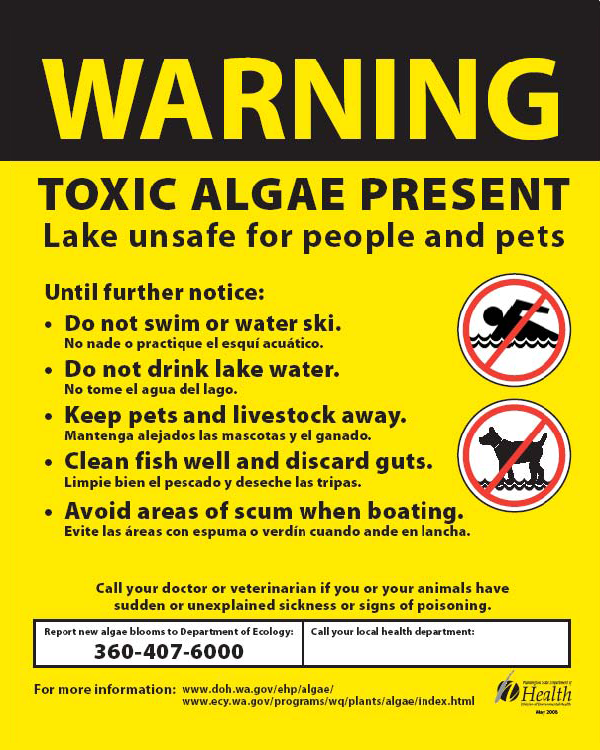 Warning Toxic Algae Sign image